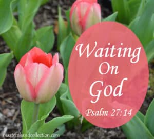 Waiting On God Psalm 27:14
