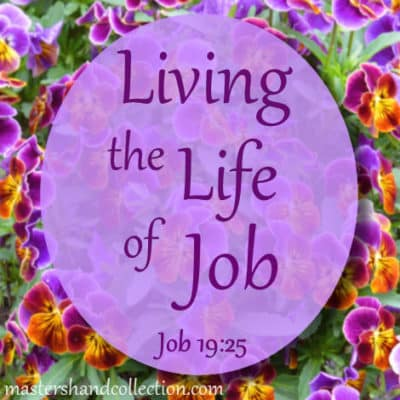Living the Life of Job Job 19:25