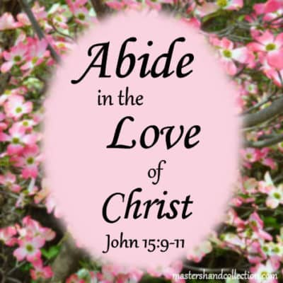 Abide in the Love of Christ John 15:9-11