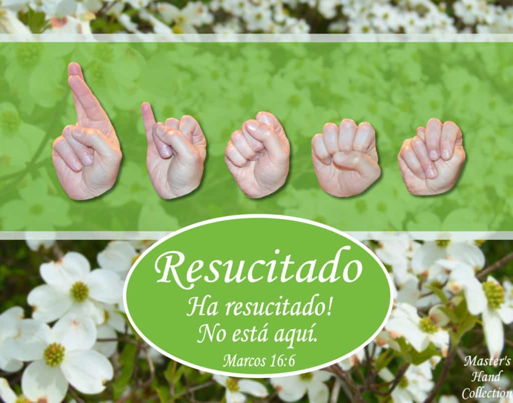 artwork titled He is Risen! Spanish by Master's Hand Collection