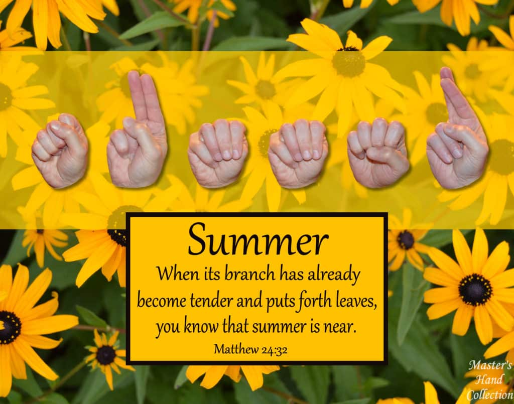 artwork titled Summer by Master's Hand Collection