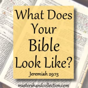 What Does Your Bible Look Like
