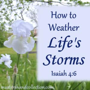 How to Weather Life's Storms - Isaiah 4:6