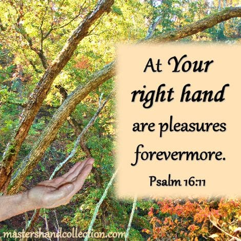 Bible Verses about God's hand; Psalm 16:11