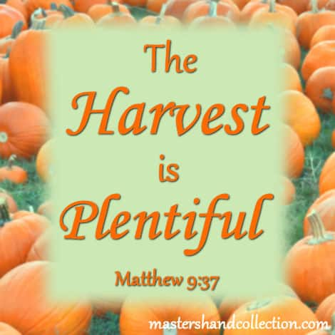 The Harvest is Plentiful Matthew 9:37