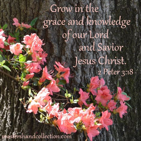 grow in grace, Lord and Savior, Jesus Christ, 2 Peter 3:18