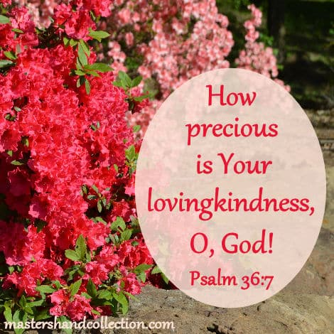 Psalm 36:7, precious is Your lovingkindness