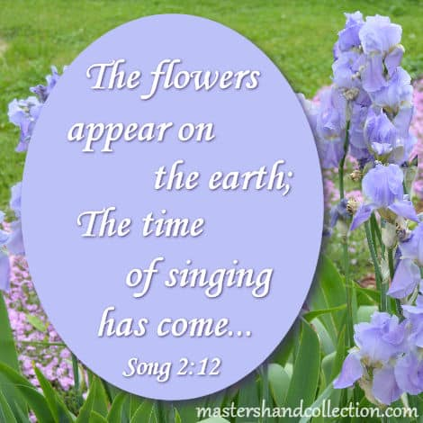 Bible verses about flowers blooming, Song of Solomon 2:12