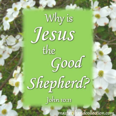 Why is Jesus the Good Shepherd? John 10:11