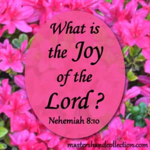 What is the Joy of the Lord? Nehemiah 8:10