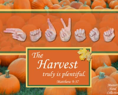 Thanksgiving Art Harvest by Master's Hand Collection