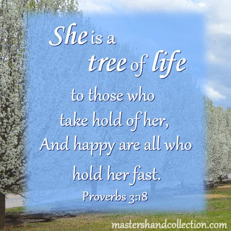 Bible Verses for Spring, tree of life, Proverbs 3:18