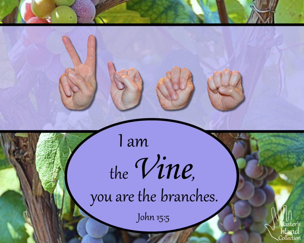 artwork I am the Vine by Master's Hand Collection