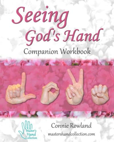 Seeing God's Hand Companion Workbook
